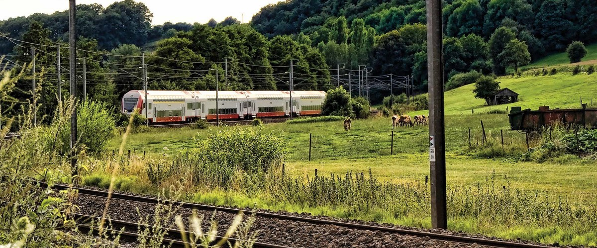 Le transport ferroviaire de passagers : une success story