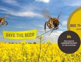 La campagne SAVE THE BEES obtient 5.000 signatures