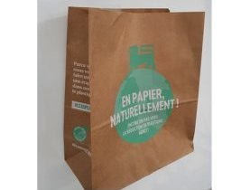 The Lion's Footprint, Delhaize, sac de courses réutilisable, papier recyclable et 100% recyclé, réduire son empreinte écologique, plastique à usage unique, solution durable