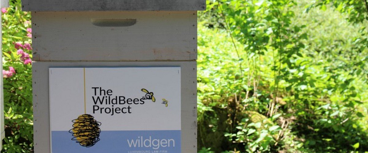 Wildgen 4 Environment : The WildBees Project