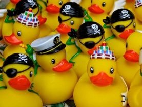 Duck Race, course annuelle